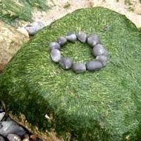 Ein kleiner Steinkreis auf einem großen, grün bemoosten Stein